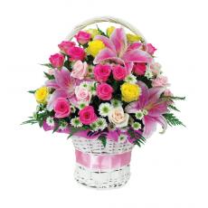 [바구니-222]핑크세일러 2