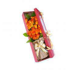 [5-상자]노을지는 장미